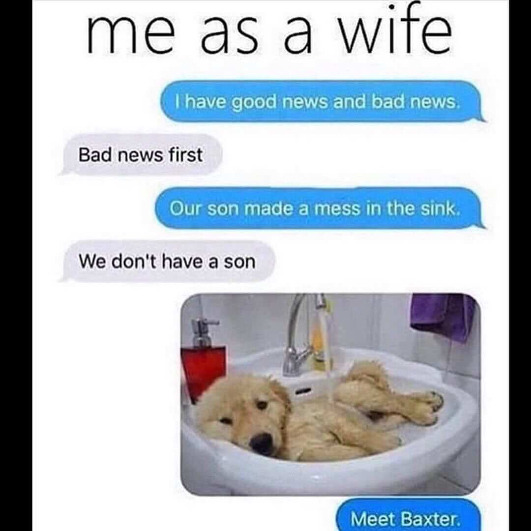 Funny Me as A Wife Memes Funny Relationship Memes for Him Therelationshipmemes