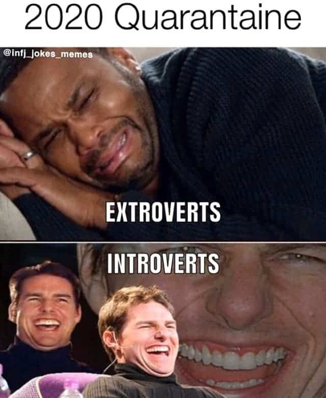 Hilarious Quarantine Memes Funny Quarantine Introverts Extroverts Coronavirus Lockdown Jokes