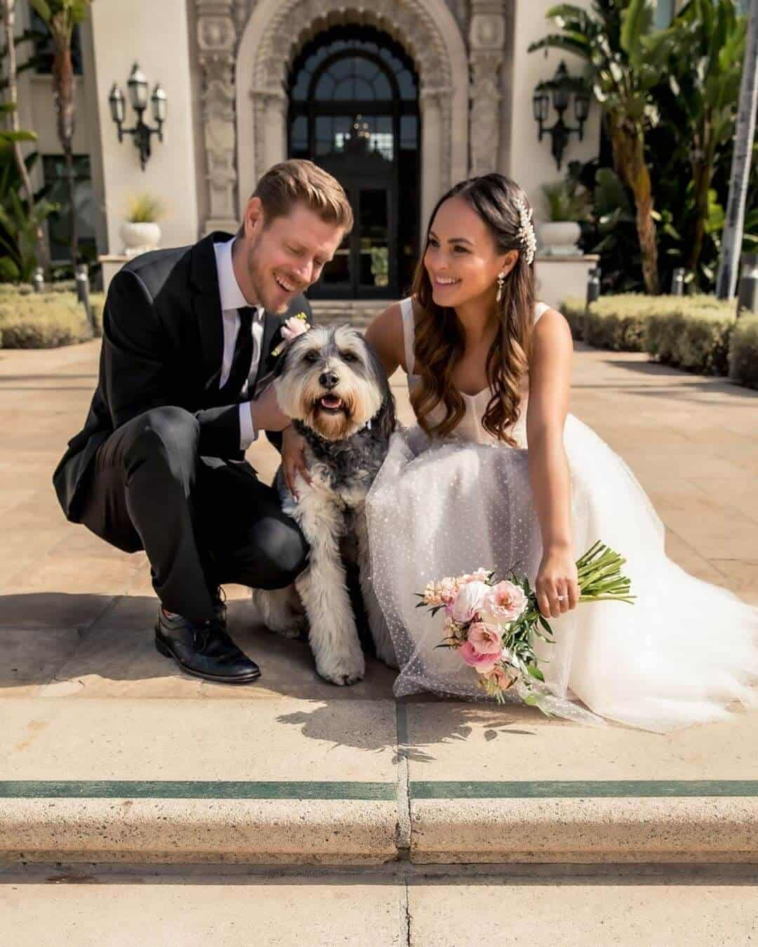Wedding with Puppies Cute Wedding Puppy Beverly Hills Courthouse Melanee Shale Wolfgang 2 (1)