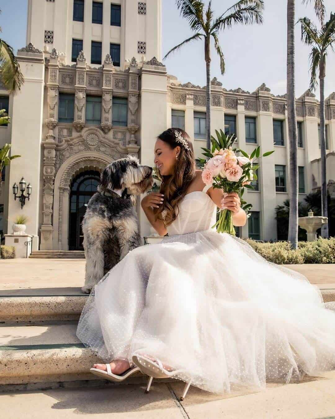 Wedding with Puppies Cute Wedding Puppy Beverly Hills Courthouse Melanee Shale Wolfgang 4 (1)